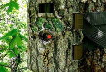 Guide d'achat : caméra de chasse