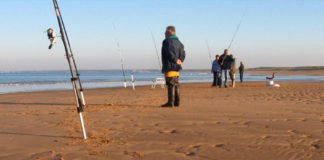 Guide d'achat : canne surfcasting