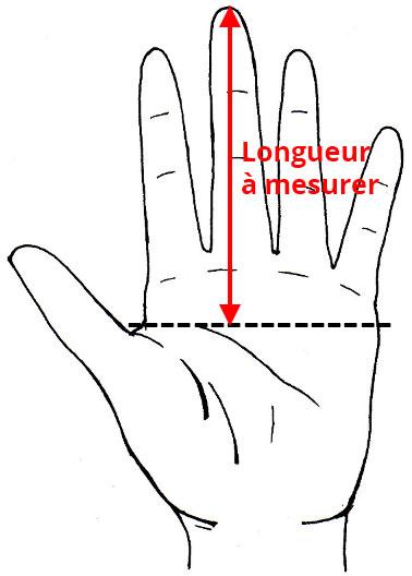 Mesurer la longueur de la main